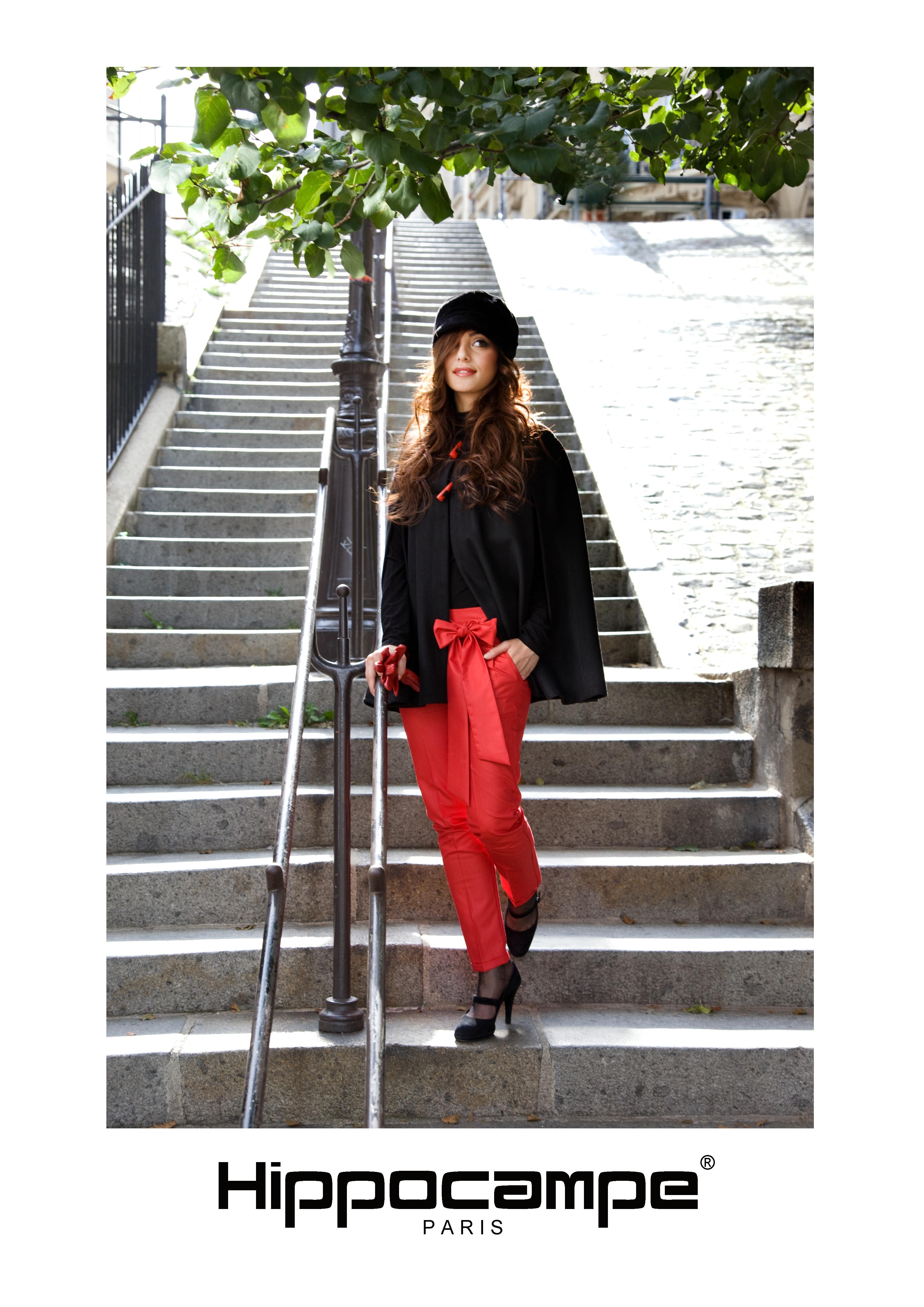 Les marches rue Mont Cenis